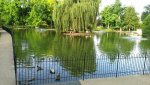 Staunton Duck Pond1.jpg
